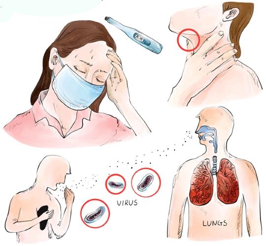감염성 질환