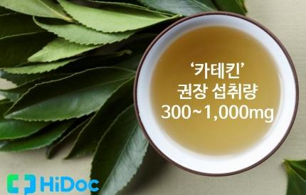 카테킨 권장 섭취량 300~1000mg