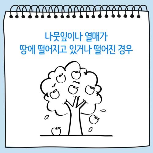 나뭇잎이나 열매가 땅에 떨어지고 있거나 떨어진 나무 그림
