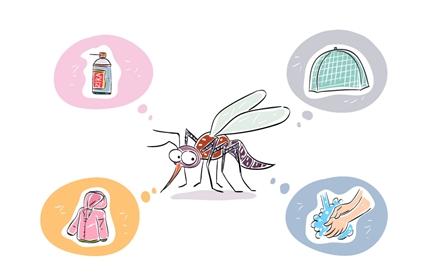 모기와의 전쟁! '기피제·살충제'의 올바른 사용법