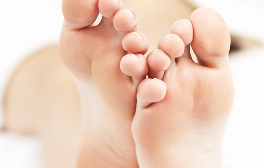 성인의 발