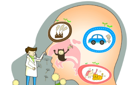[1분 Q&A] 알레르기비염에 좋은 음식은 무엇이 있나요?