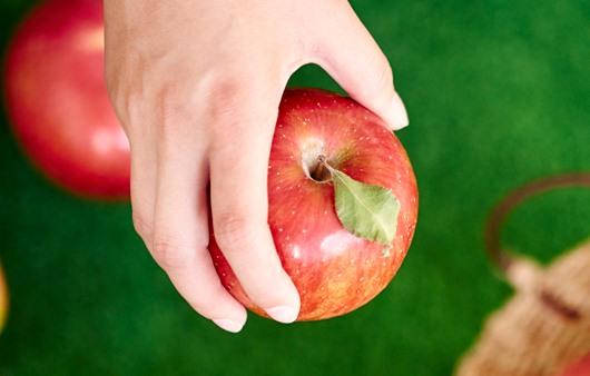 맛있는 추석 과일 고르는 법, 남은 과일 활용법은?