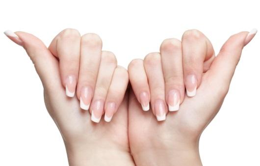 건강한 손톱