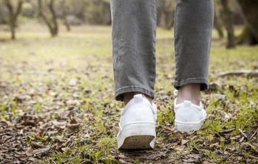 산책 운동