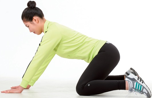관절기능 운동
