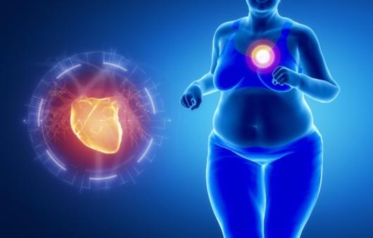 뚱뚱하면 오래 산다는 비만의 역설, 사실일까 아닐까?