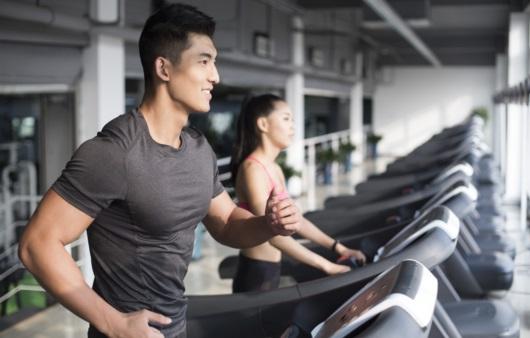 운동 부족도 지방간의 원인