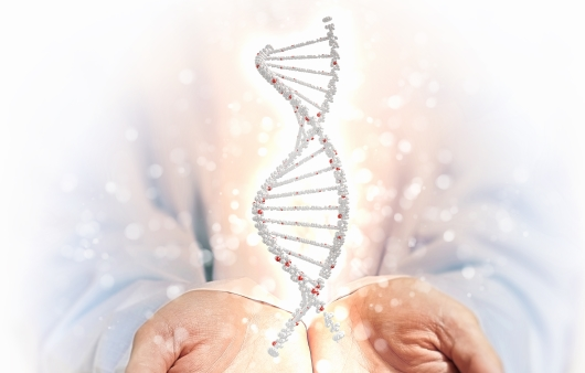 시력, 성격 유전된다? 궁금한 유전 상식 7