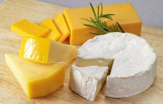 여러 종류의 치즈