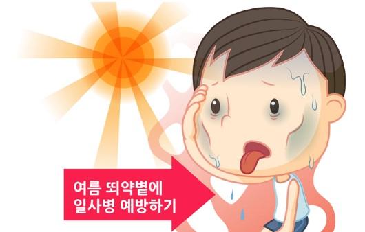 여름철 질환 예방