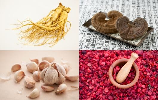 인삼, 영지버섯, 마늘, 구기자