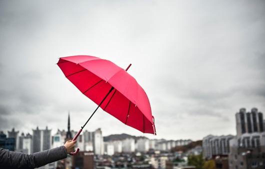 비오는 날 우산