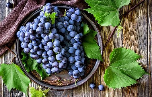 입맛 돋우는 가을 5대 제철과일의 영양과 효능
