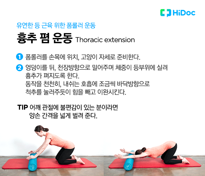 유연한 등근육을 위한 운동