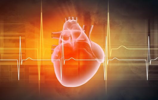 고혈압, 고지혈증 환자가 먹으면 좋은 '코엔자임큐텐'의 효능