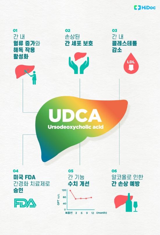 UDCA 효능