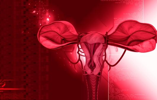 난자 이동 경로에 따른 여성불임원인 3가지