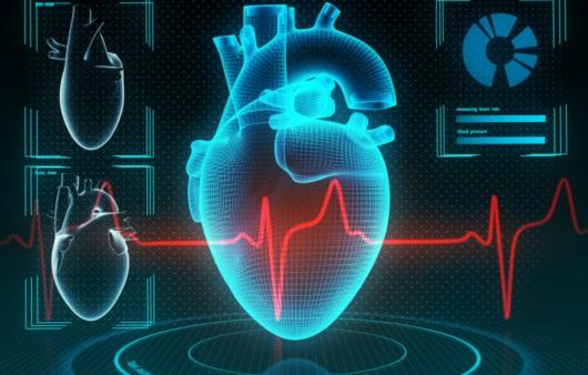 심장과 건강