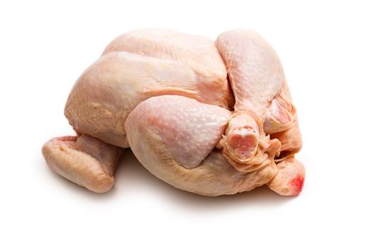 삼계탕 등 닭요리 시 '식중독' 조심하세요