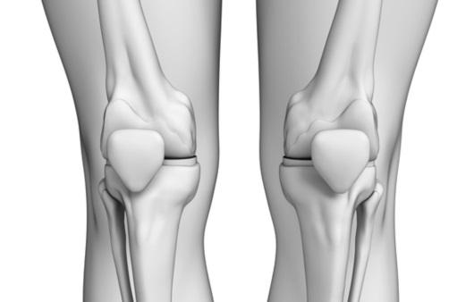 무릎 관절을 많이 사용하면 정말 해로울까?