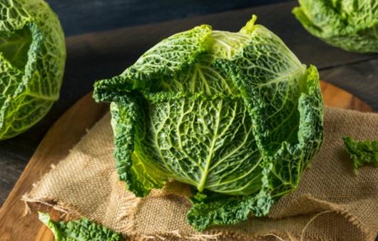 십자화과 채소