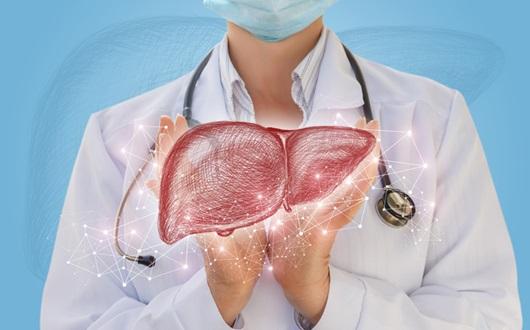 생명을 위협하는 간질환과 그 치료법은?
