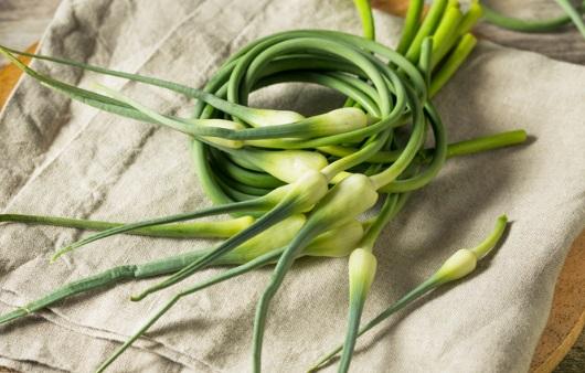 마늘 못지 않은 영양이 듬뿍, '마늘종'의 효능 5