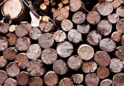 나무인 듯 나무 아닌 나무 같은 너, 가구 목재와 건강