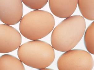 AI에도 아이에게 매일 달걀 먹이는 이유는?